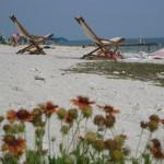 Key west, beach, relaxing