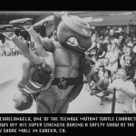 Teenage Mutant Turtles, Eureka, Ca, Bayshore Mall, randy thieben, photography, photojournalism